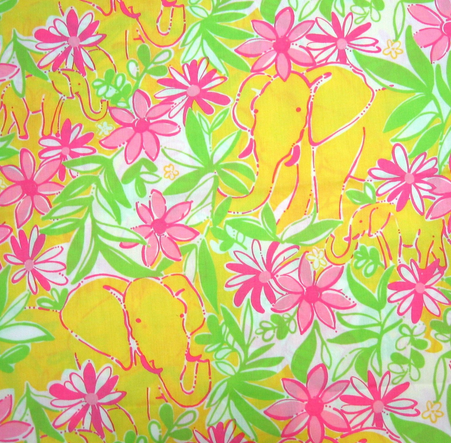 i have one lilly pulitzer dress ren233e a schulsjacobson